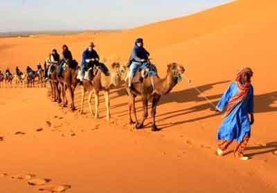 Sahara Tours