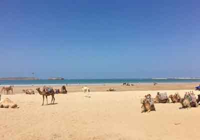 Beach Of Essaouira