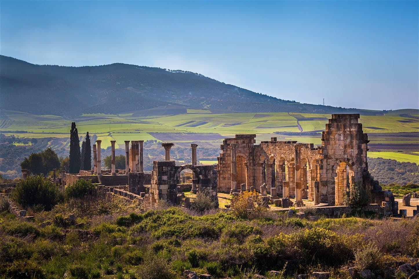 Basilica of Volubilis
